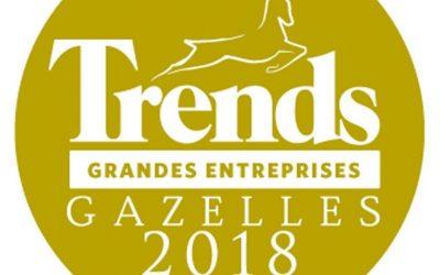 Classement 2018 des Trends Gazelles