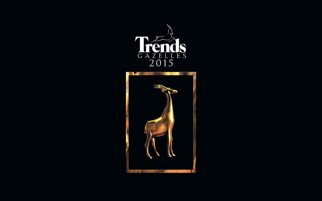 Classement 2015 des Trends Gazelles