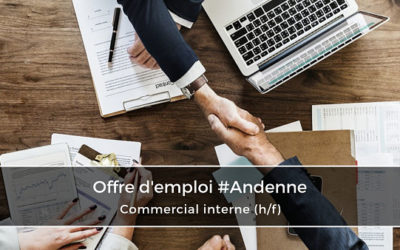 Commercial interne – Sales Support trilingue (h/f)