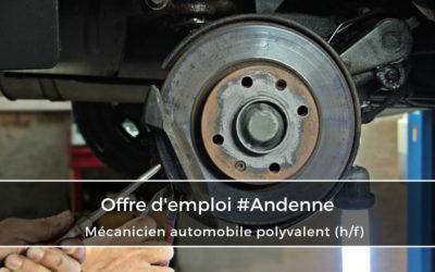 Mécanicien Automobile Polyvalent (h/f)