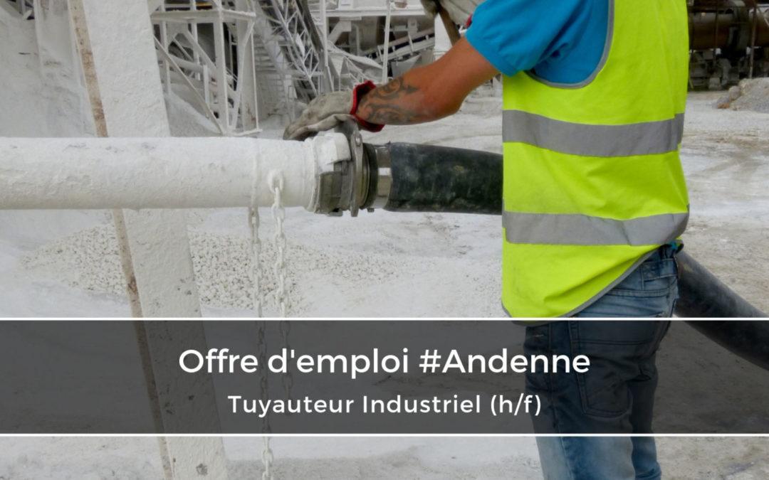 Tuyauteur Industriel (H/F)
