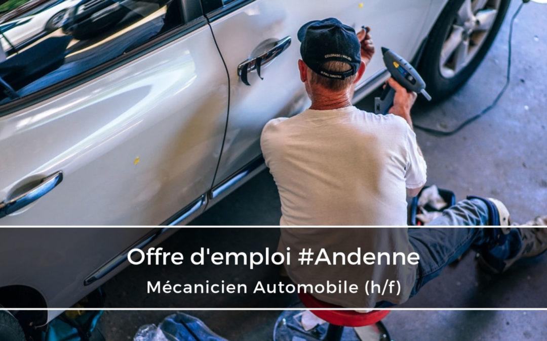 Mécanicien automobile (h/f)