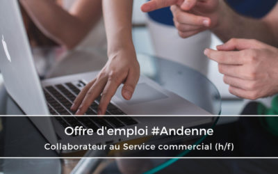 Collaborateur au Service Commercial et Marketing (H/F)