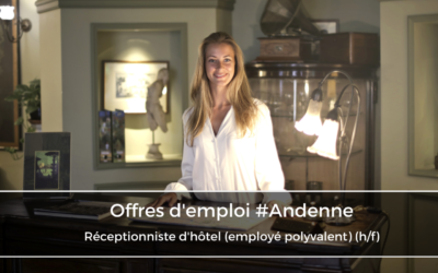 Réceptionniste d'hôtel (employé polyvalent) (h/f)
