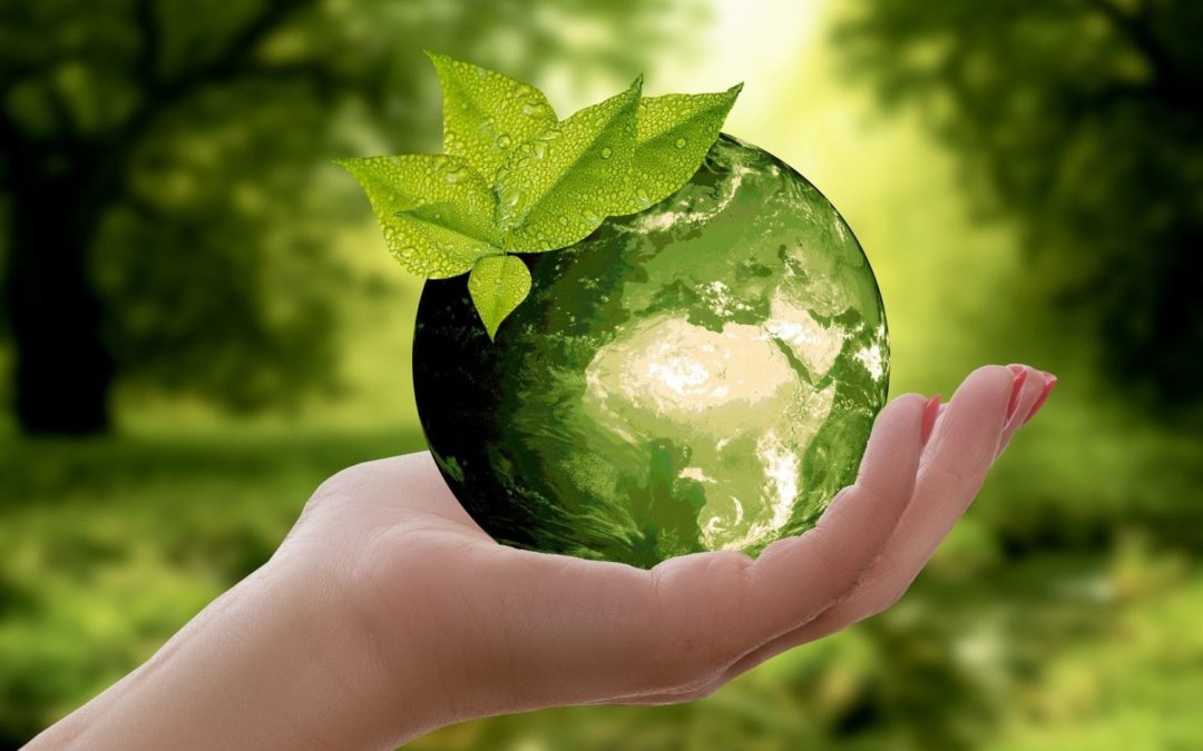 Transition écologique : une nouvelle campagne Proximity à Andenne