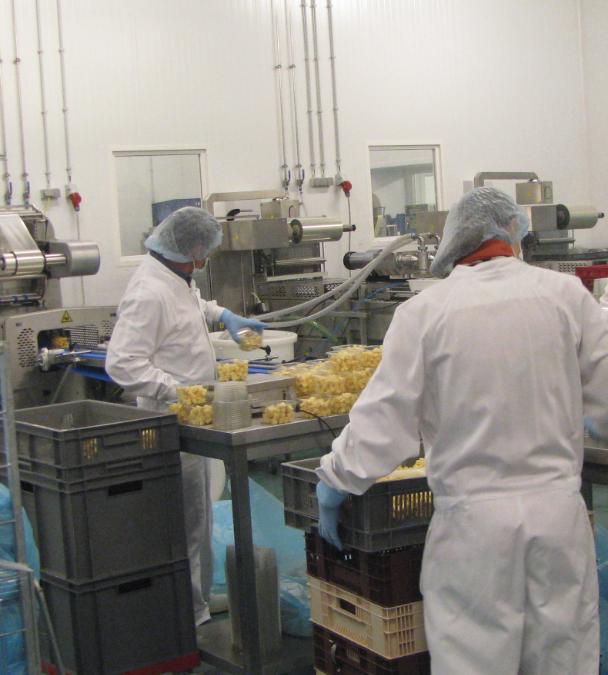 Fournipac, une solution sur mesure dans la production et le stockage alimentaire