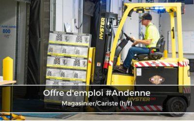 Magasinier/Cariste (h/f)